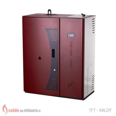 Tft kaldy bio la caldaia a biomassa caldo su misura for Caldaia a biomassa wikipedia